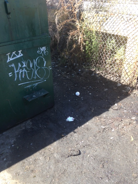dumpster ball